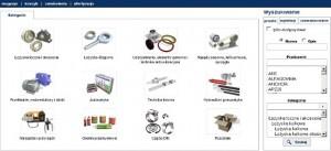 Platforma elektroniczna – główne kategorie produktowe