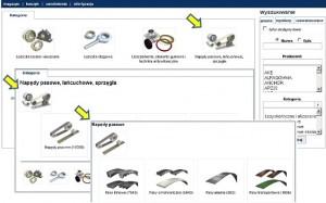 Platforma elektroniczna – wyszukiwanie po kategorii
